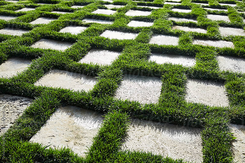 Grass and concrete pavers by Trinette Reed for Stocksy United