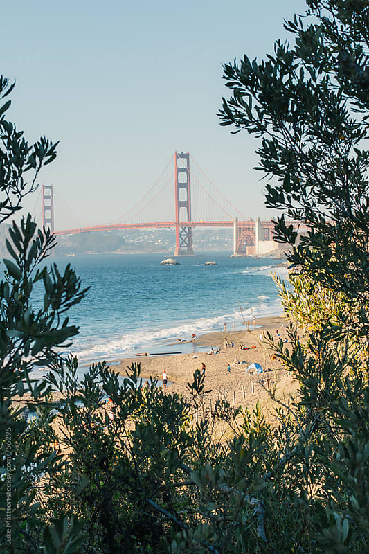 View Of Golden Gate Bridge Through Bushes At Baker Beach by Luke Mattson for Stocksy United