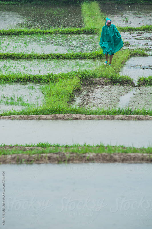 Woman walking by Chalit Saphaphak for Stocksy United