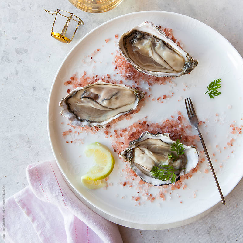 Oysters on pink salt by Nadine Greeff for Stocksy United