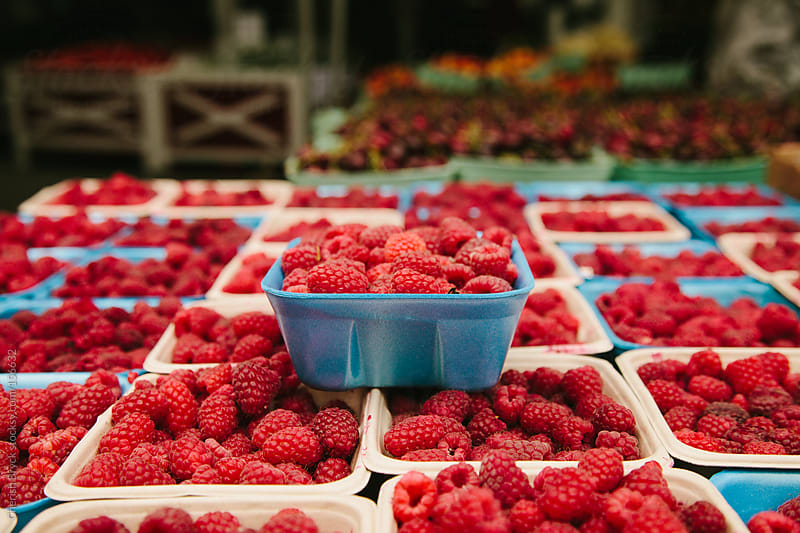 Berries at the market. by Cherish Bryck for Stocksy United