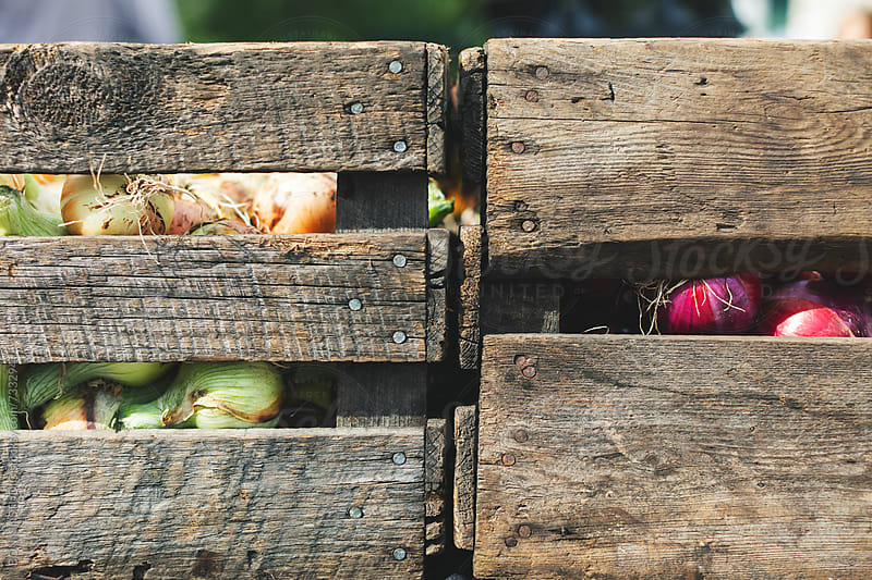Wooden box with organic vegetables.  by BONNINSTUDIO for Stocksy United