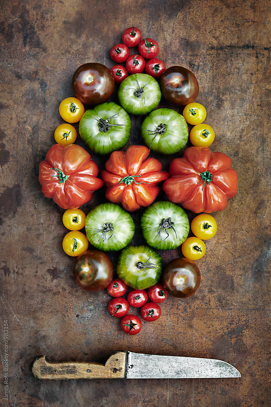 Assorted tomatoes  by James Ross for Stocksy United