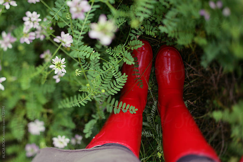 Red Boots and Wildflowers by ALICIA BOCK for Stocksy United