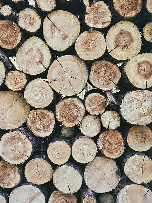 Logs for the Fire by Ronnie Comeau for Stocksy United