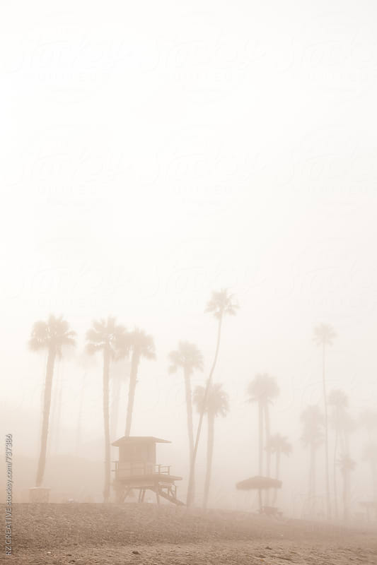 Lifeguard tower and palm trees through heavy early morning fog. by Robert Zaleski for Stocksy United