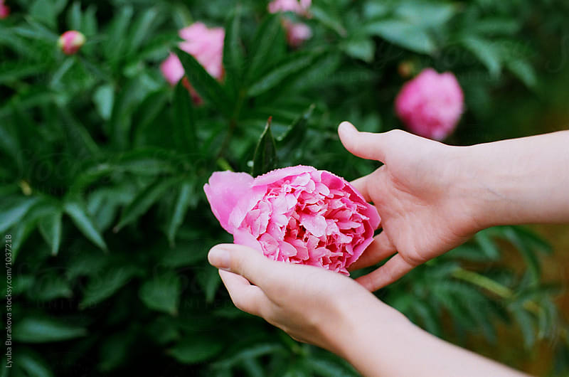Young woman touches a pink peony by Liubov Burakova for Stocksy United