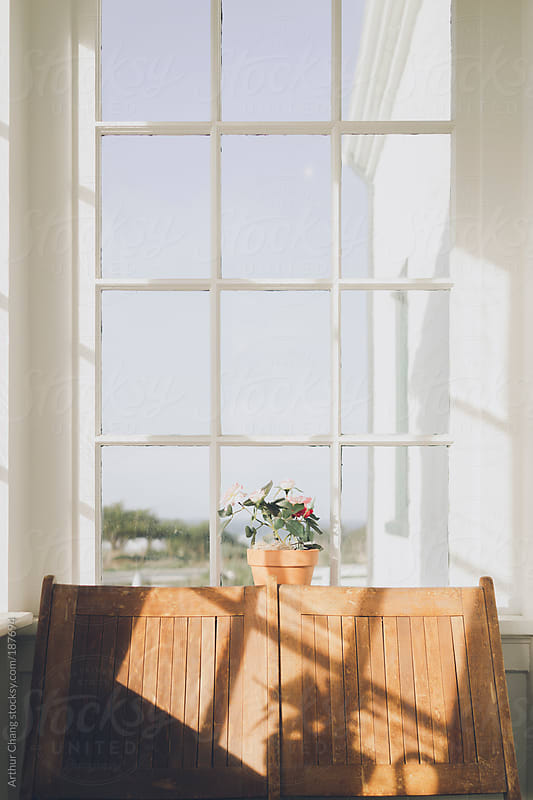 Window Seat by Arthur Chang for Stocksy United