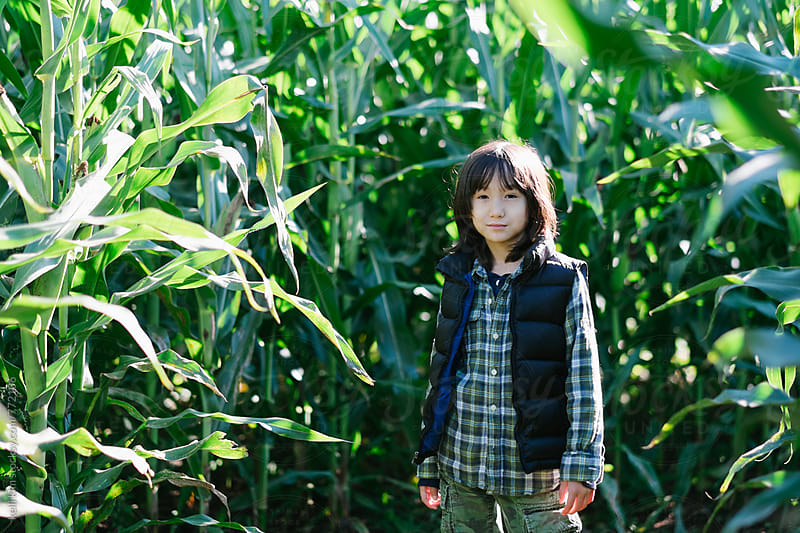 Young mixed race boy stands in corn field by Kelli Seeger Kim for Stocksy United