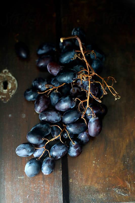 Blue Grape by Orsolya Bán for Stocksy United