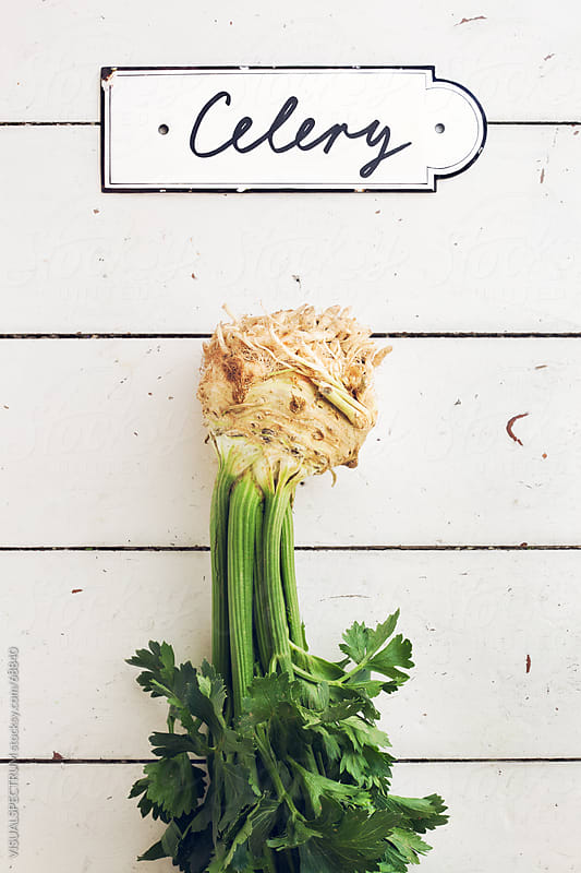 Celery by VISUALSPECTRUM for Stocksy United
