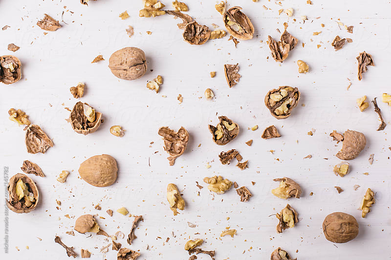 Walnuts by michela ravasio for Stocksy United