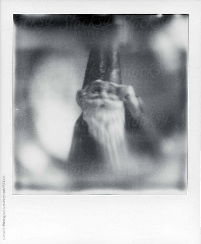 Polaroid photo of a gnome by Carleton Photography for Stocksy United