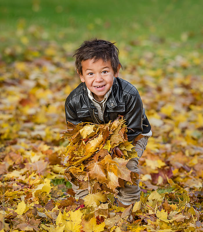 playing with autumn leaves by Andreas Gradin for Stocksy United