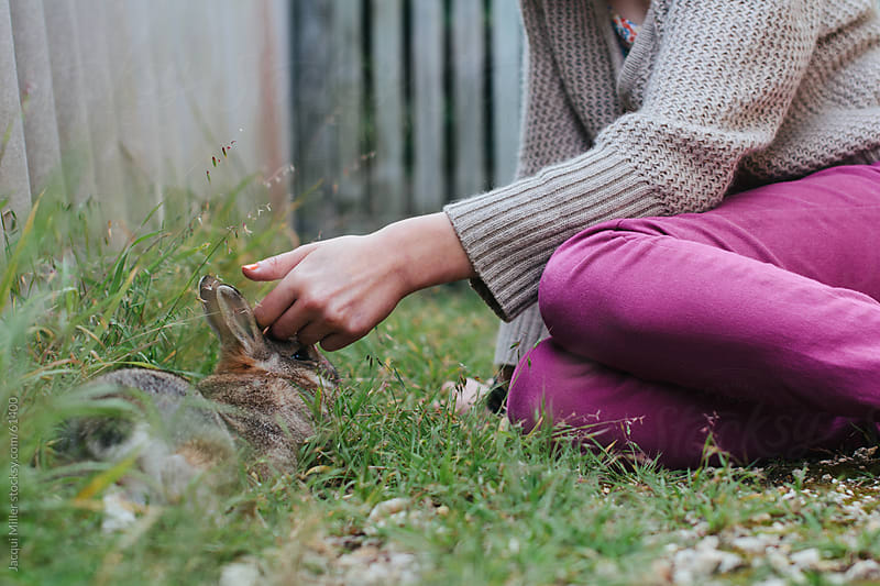 Young girl patting a brown pet rabbit by Jacqui Miller for Stocksy United
