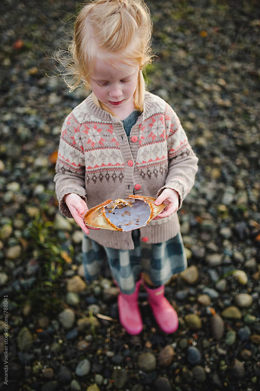 A Little Girl With Braids examines a crab shell by Amanda Voelker for Stocksy United