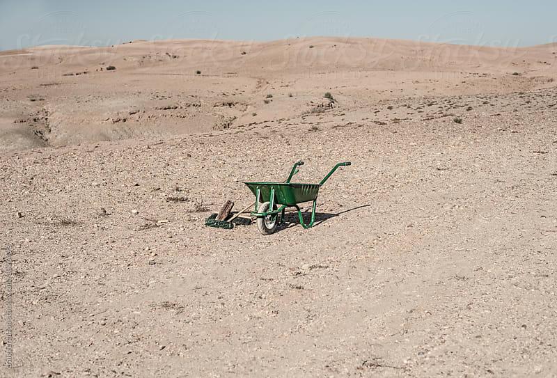 Desert Dusting by craig ferguson for Stocksy United