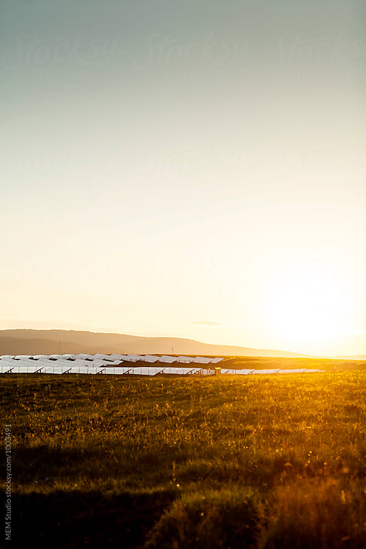 Solar panels  by MEM Studio for Stocksy United