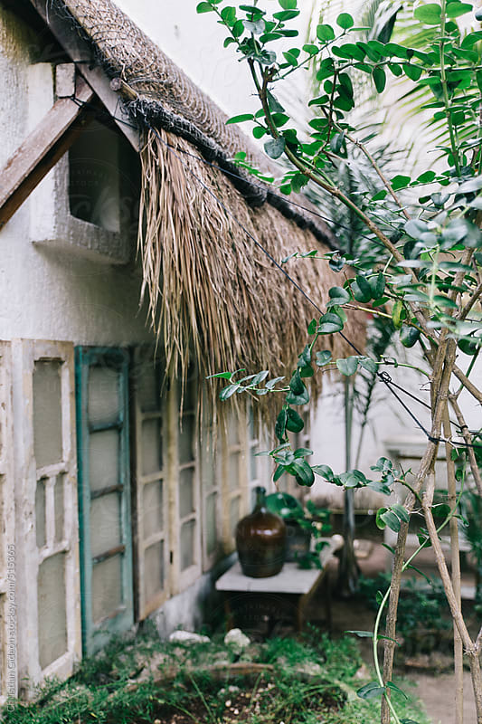 Palm Thatched Bungalow in Mexico by Christian Gideon for Stocksy United