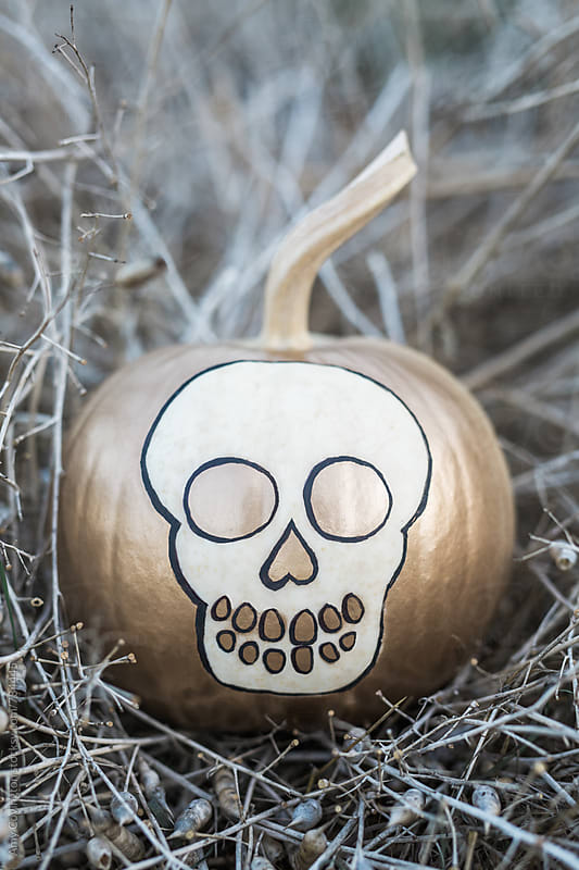 White pumpkin painted with a skull shape in gold and black paint by Amy Covington for Stocksy United