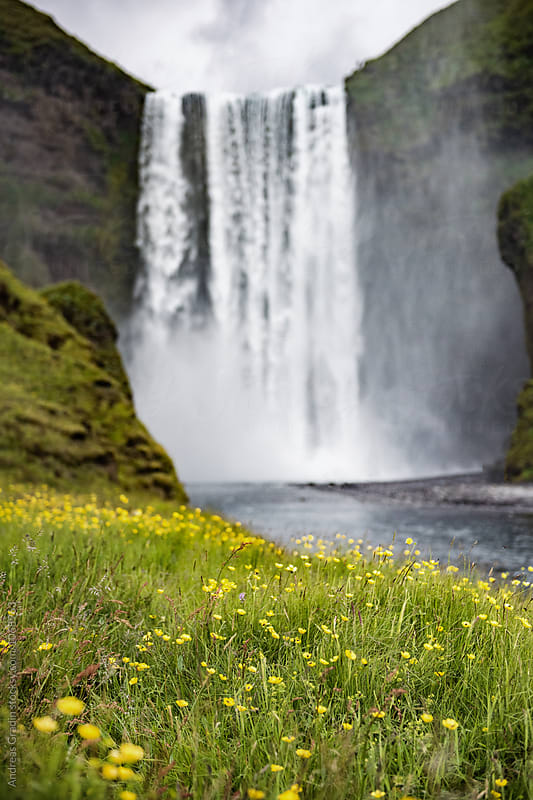 Icelandic waterfall Skogafoss by Andreas Gradin for Stocksy United