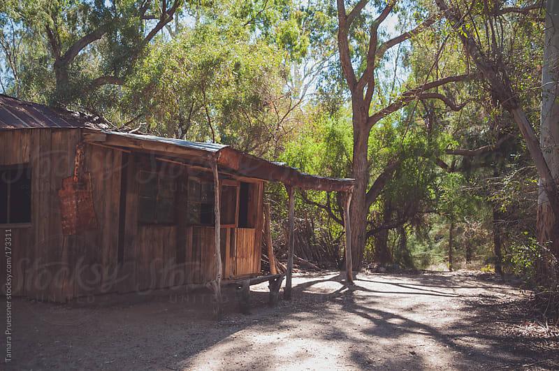 Old Wooden Cabin In Woods by Tamara Pruessner for Stocksy United