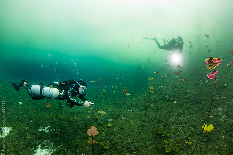 Two scuba divers swimming in Mexico's  Cenote Car Wash by Song Heming for Stocksy United