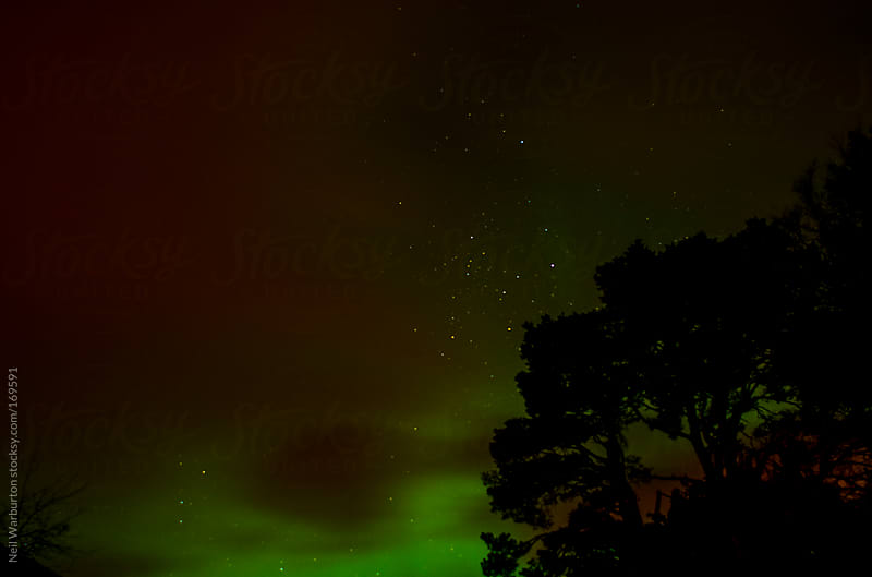 aurora borealis by Neil Warburton for Stocksy United
