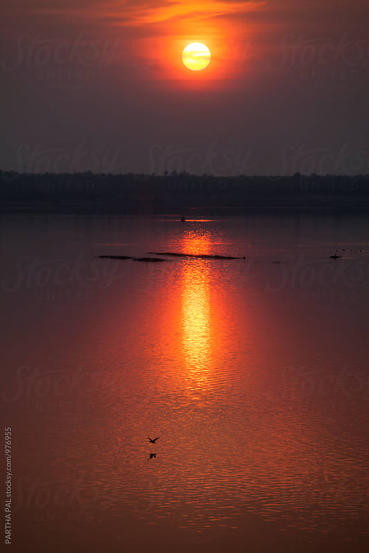 A bird is flying in a big lake at sunset time by PARTHA PAL for Stocksy United