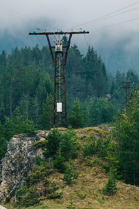 Electricity Pylon Into the Forest by Borislav Zhuykov for Stocksy United