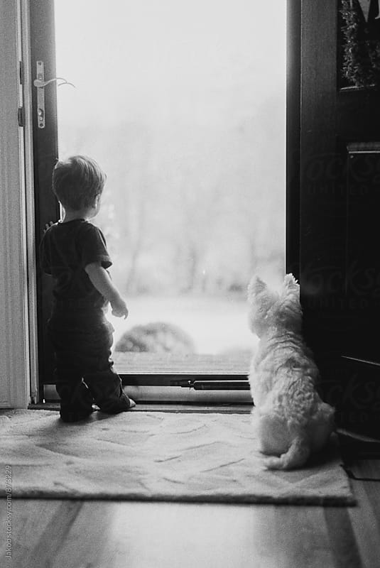 Boy toddler and a small white dog looking out through a glass door by Jakob for Stocksy United