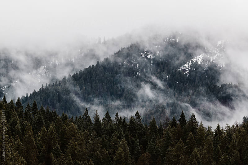 Mystical fog covering mountain side.  by Justin Mullet for Stocksy United