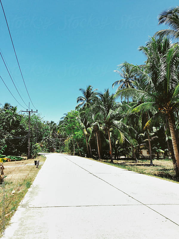 Empty Road on Tropical Island by VISUALSPECTRUM for Stocksy United