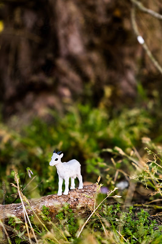 Miniature Plastic Toy white Goat on rock in grass by J Danielle Wehunt for Stocksy United