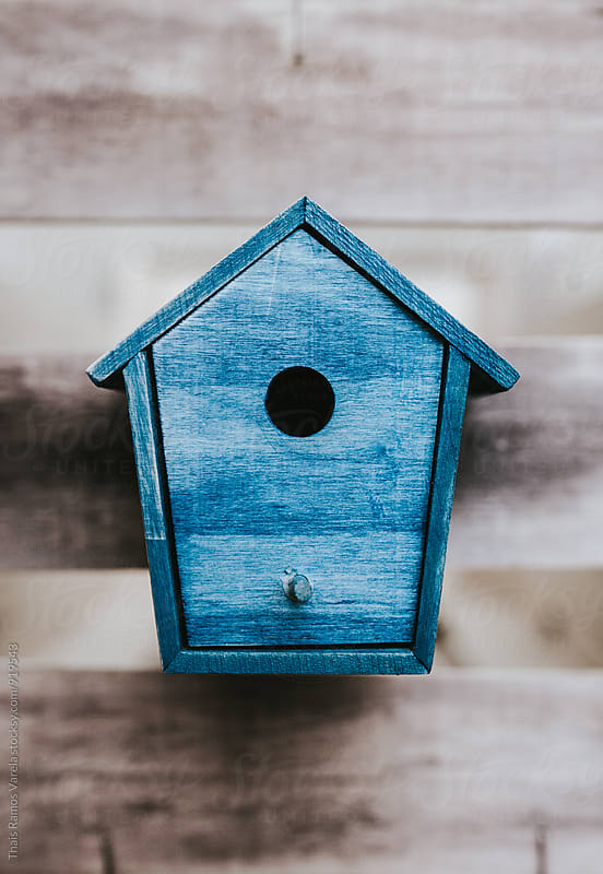 Blue bird house on a wood table by Thais Ramos Varela for Stocksy United