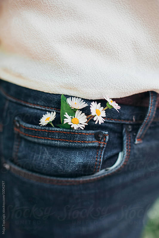 Daisies in jeans by Maja Topcagic for Stocksy United