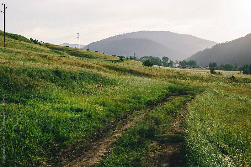 Road in the meadow by Aleksandar Novoselski for Stocksy United