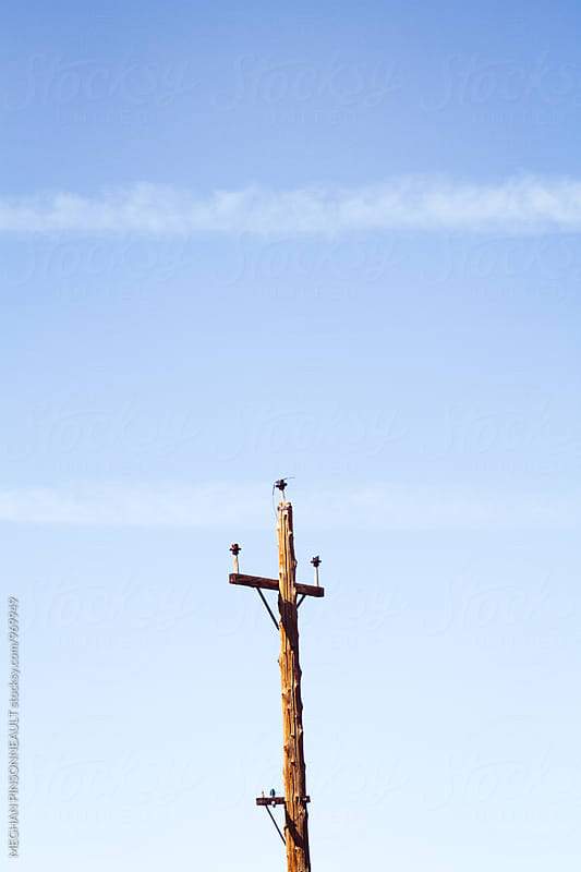 Old Telephone Pole in Creepy Ghost Town by MEGHAN PINSONNEAULT for Stocksy United
