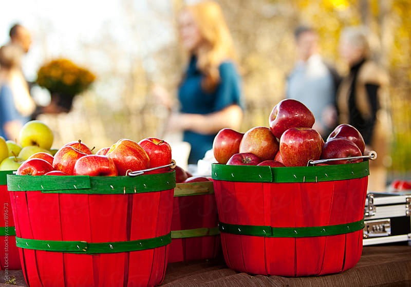 Farmer's Market: Buckets of Apples at Market by Sean Locke for Stocksy United