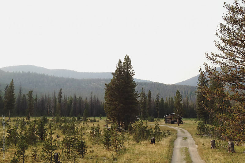 Idaho Cabin Road by Kevin Russ for Stocksy United