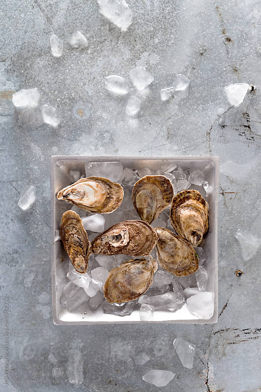 Raw Oysters in Metal Tray by Studio Six for Stocksy United