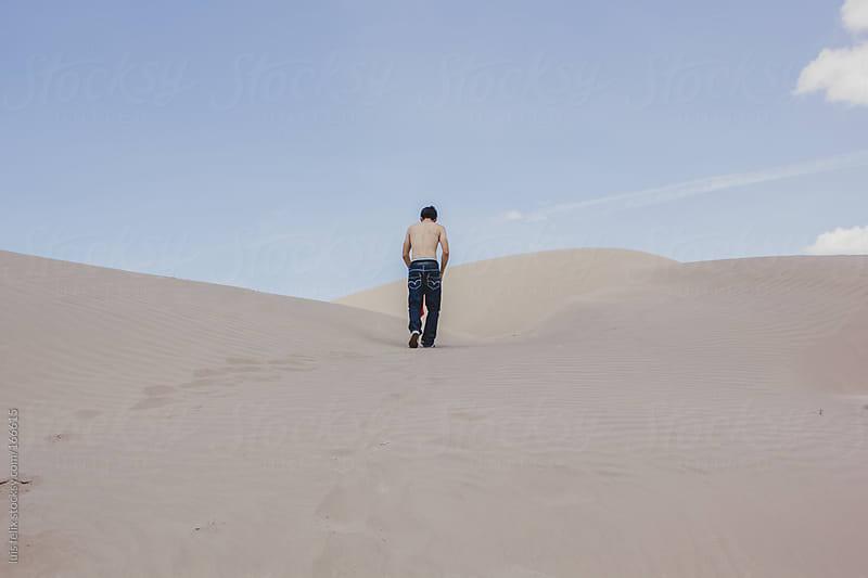 desert by luis felix for Stocksy United