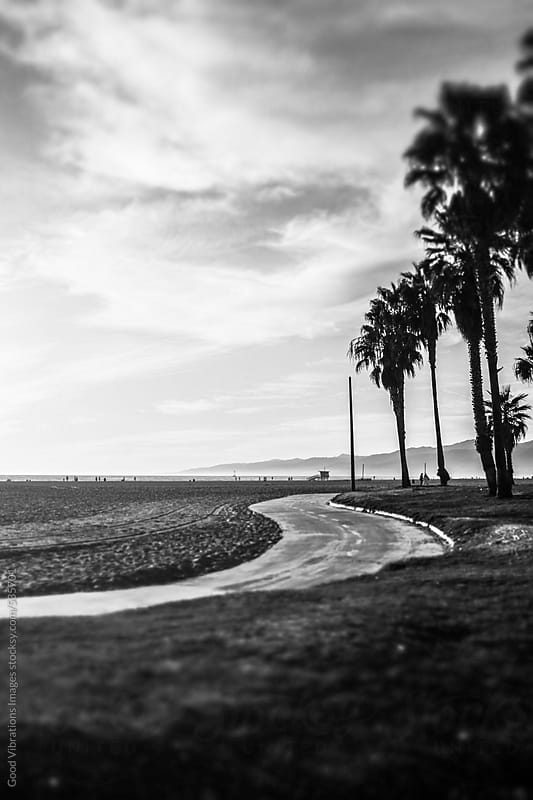 Venice Beach, Black and white by Good Vibrations Images for Stocksy United