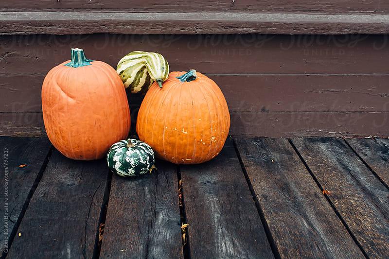 Various pumpkins outdoors by Gabriel (Gabi) Bucataru for Stocksy United