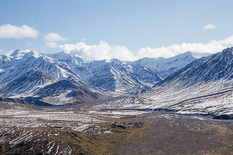 The stunning landscape of Denali national park by Maximilian Guy McNair MacEwan for Stocksy United