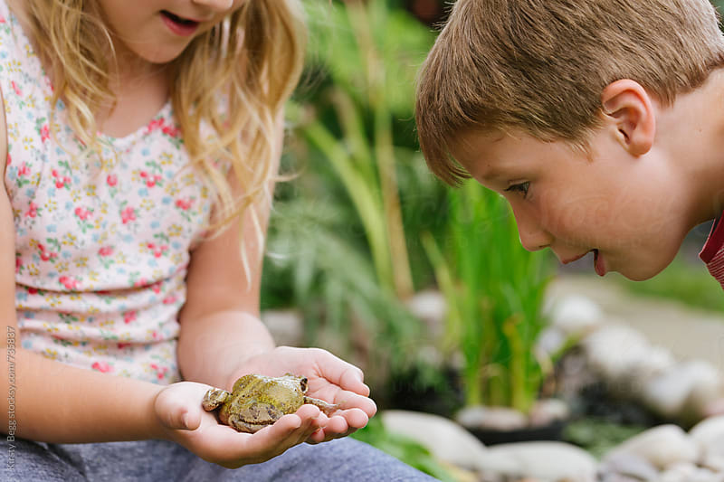 Girl holds frog and boy looks on amazed by Kirsty Begg for Stocksy United