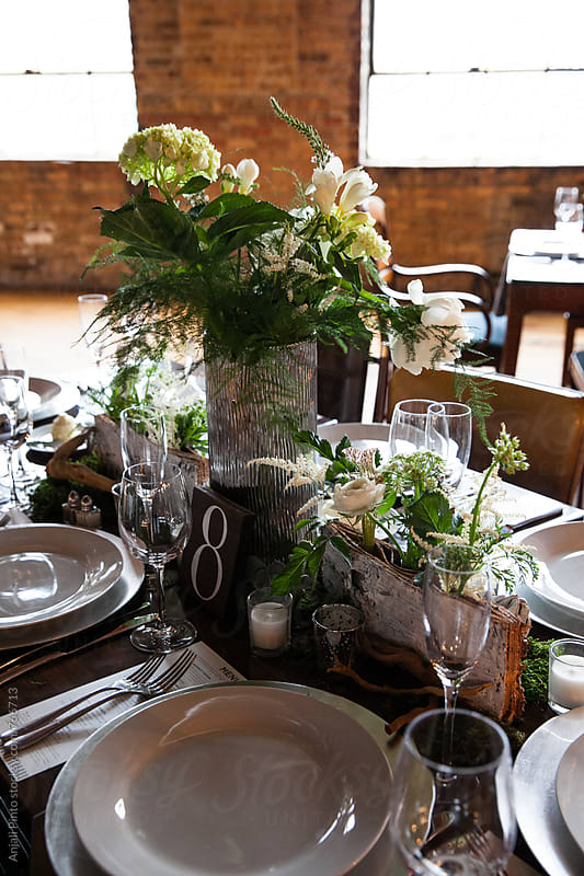 Lush and Simple Wedding Decor by Anjali Pinto for Stocksy United