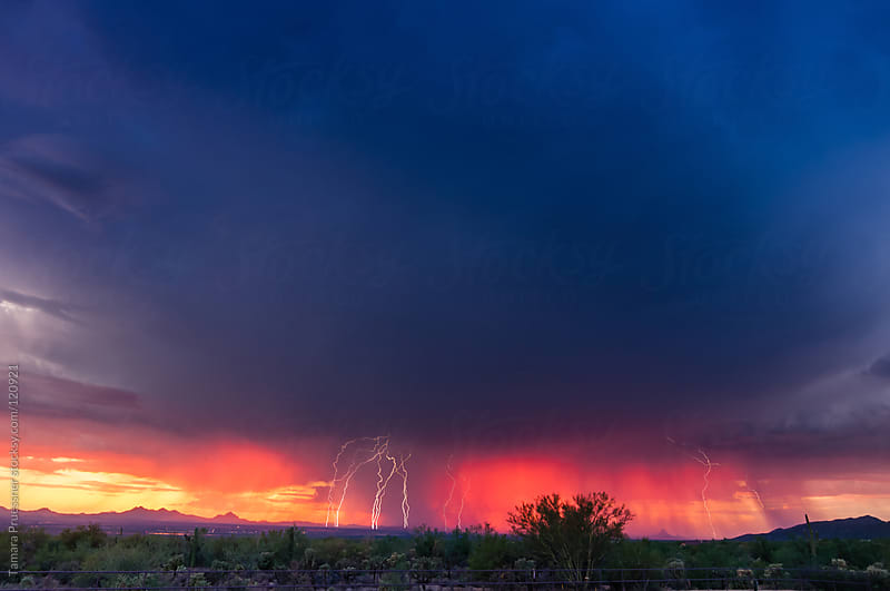 Lightning Storm At Sunset by Tamara Pruessner for Stocksy United