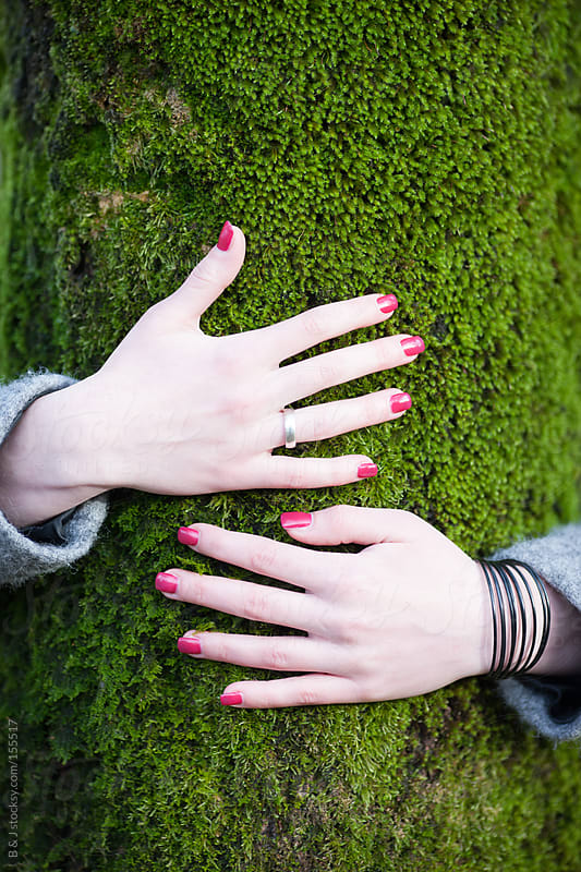 female hands hugging a tree by B & J for Stocksy United