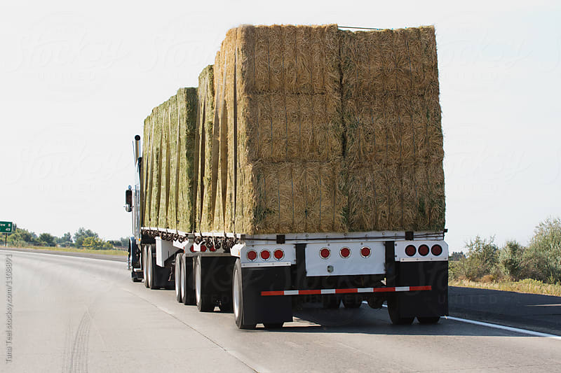 semi truck loaded with hay driving down freeway